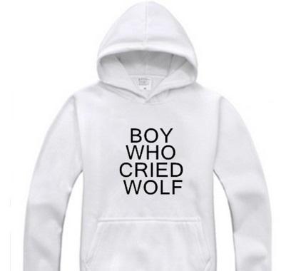 bwcw hoodie 3