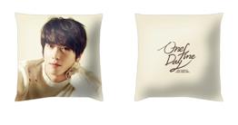 yonghwa cushion cover