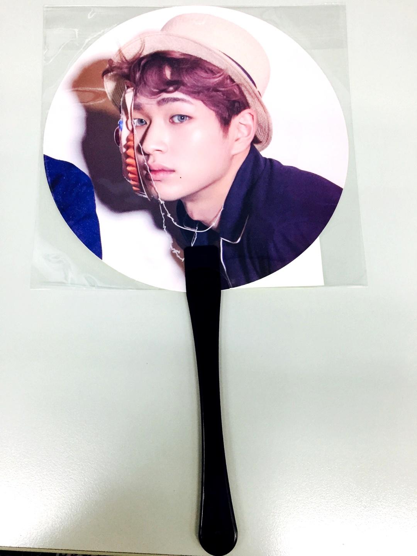 shinee fan
